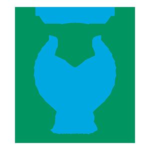 Leis Pontevedra F.S.